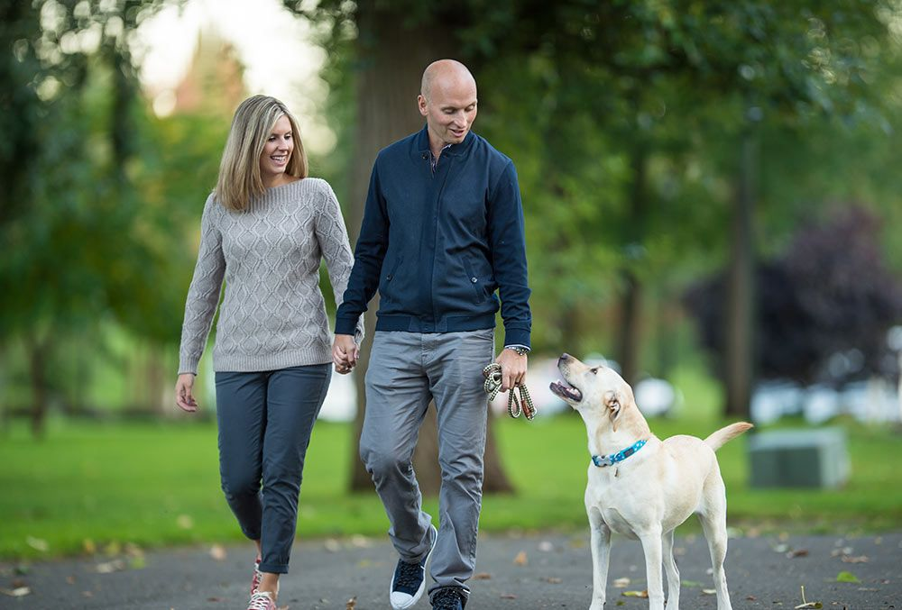 6 Guidelines For Positive Health Dog training