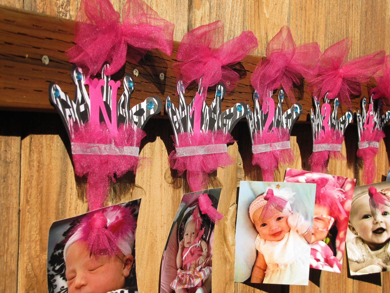 Princess Zebra First Year Banner Pink Zebra Crown Banner First