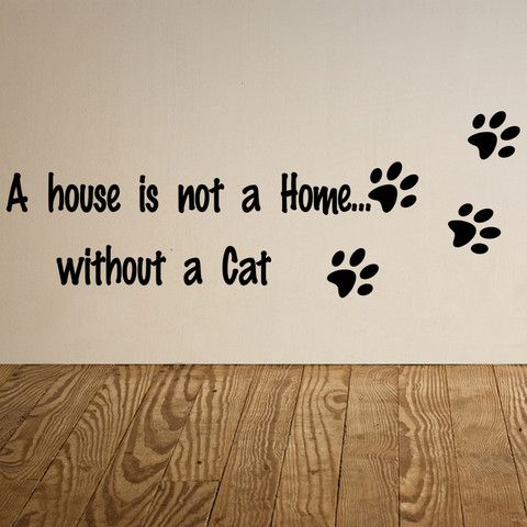 A House Is Not A Home Without A Cat Wall Stickers Canada Wall