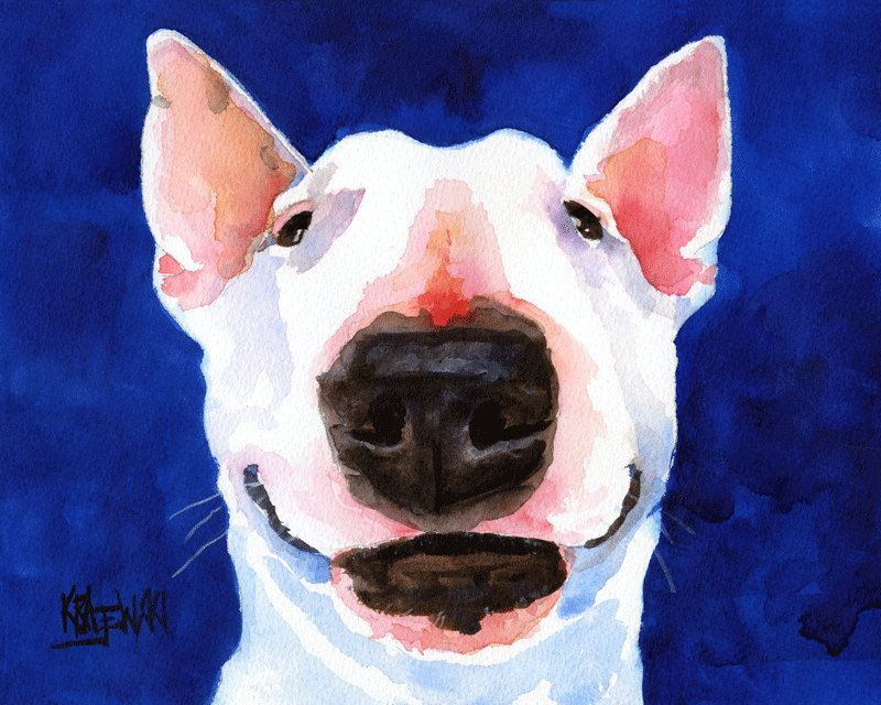 Bull Terrier Art Print Of Original Watercolor Painting X - Bull terrier art