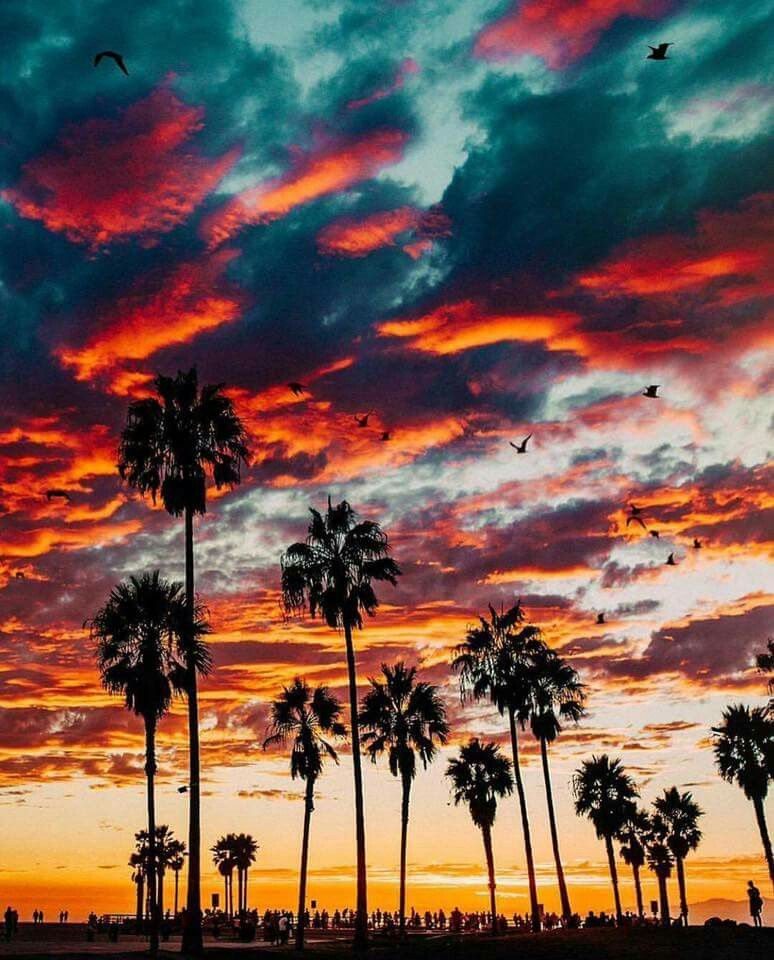 Beautiful Nature Los Angeles: Sunsets... Beautiful In 2019