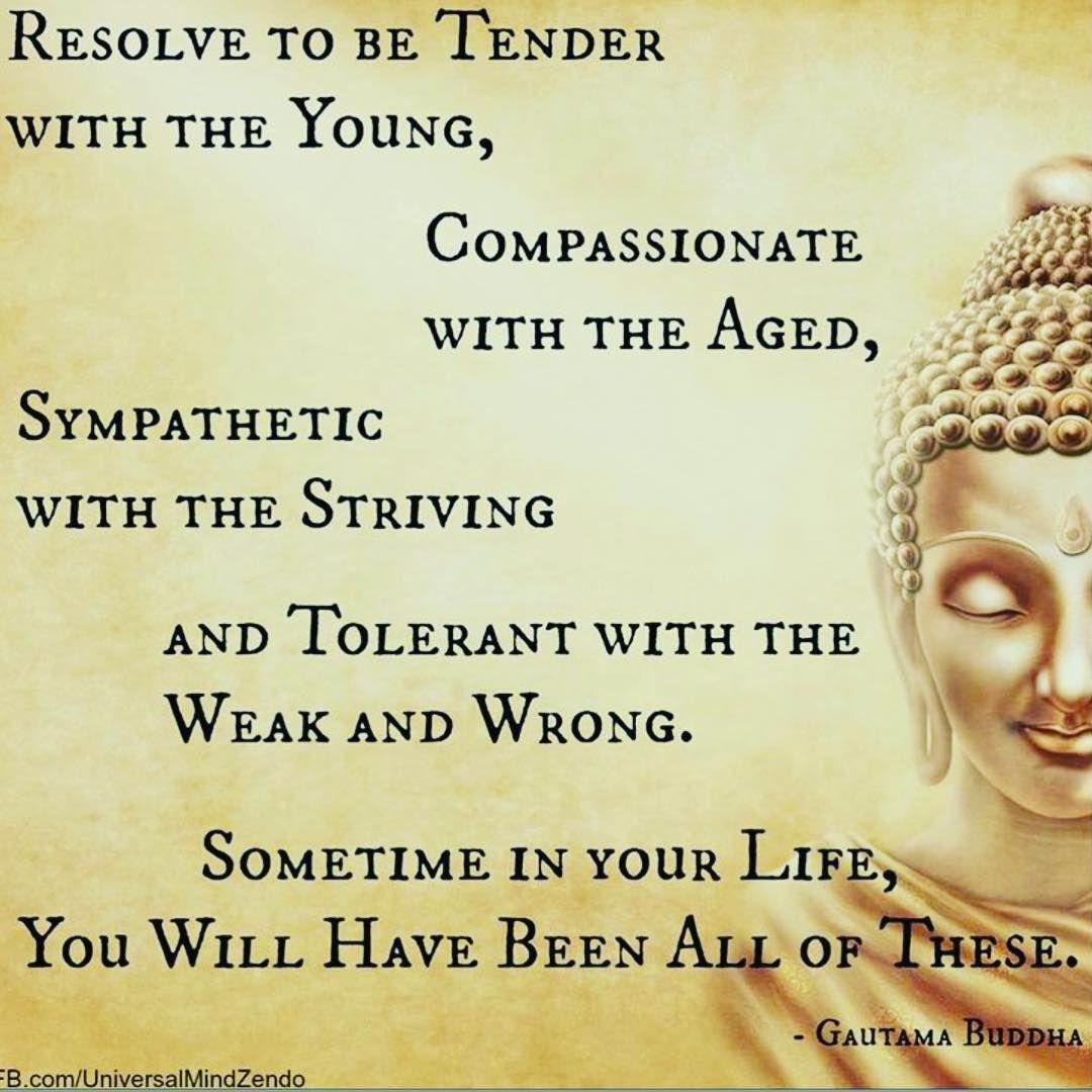 buddhist Buddhism buddha passion kindness sympathy