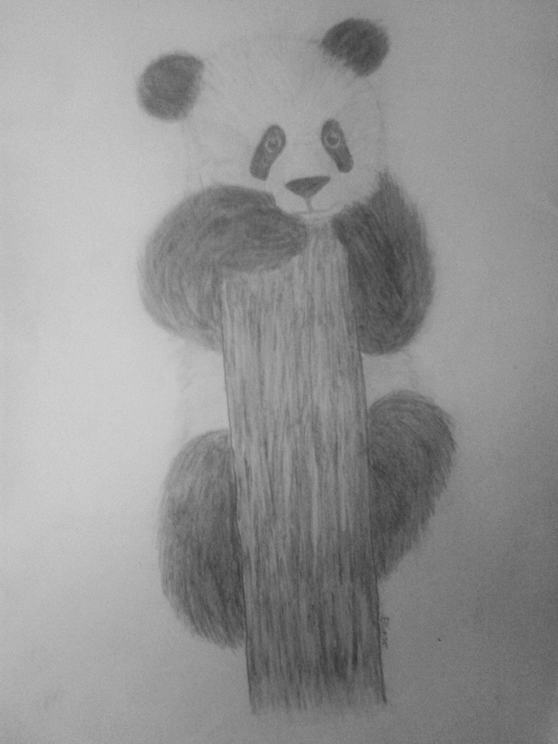 Süßer Panda. Leicht zu zeichnen. | Meine Zeichnungen | Pinterest ...