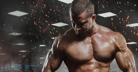 25a3f664d83b If you have the desire to build strong and superior muscles