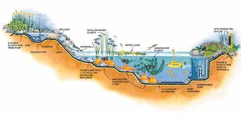 Come progettare e costruire un laghetto nel giardino - Costruire laghetto giardino ...