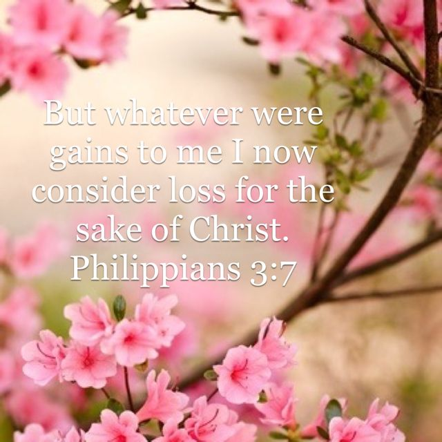 Philippians 3 7 New International Version Niv Good Thoughts Bible Apps Christ