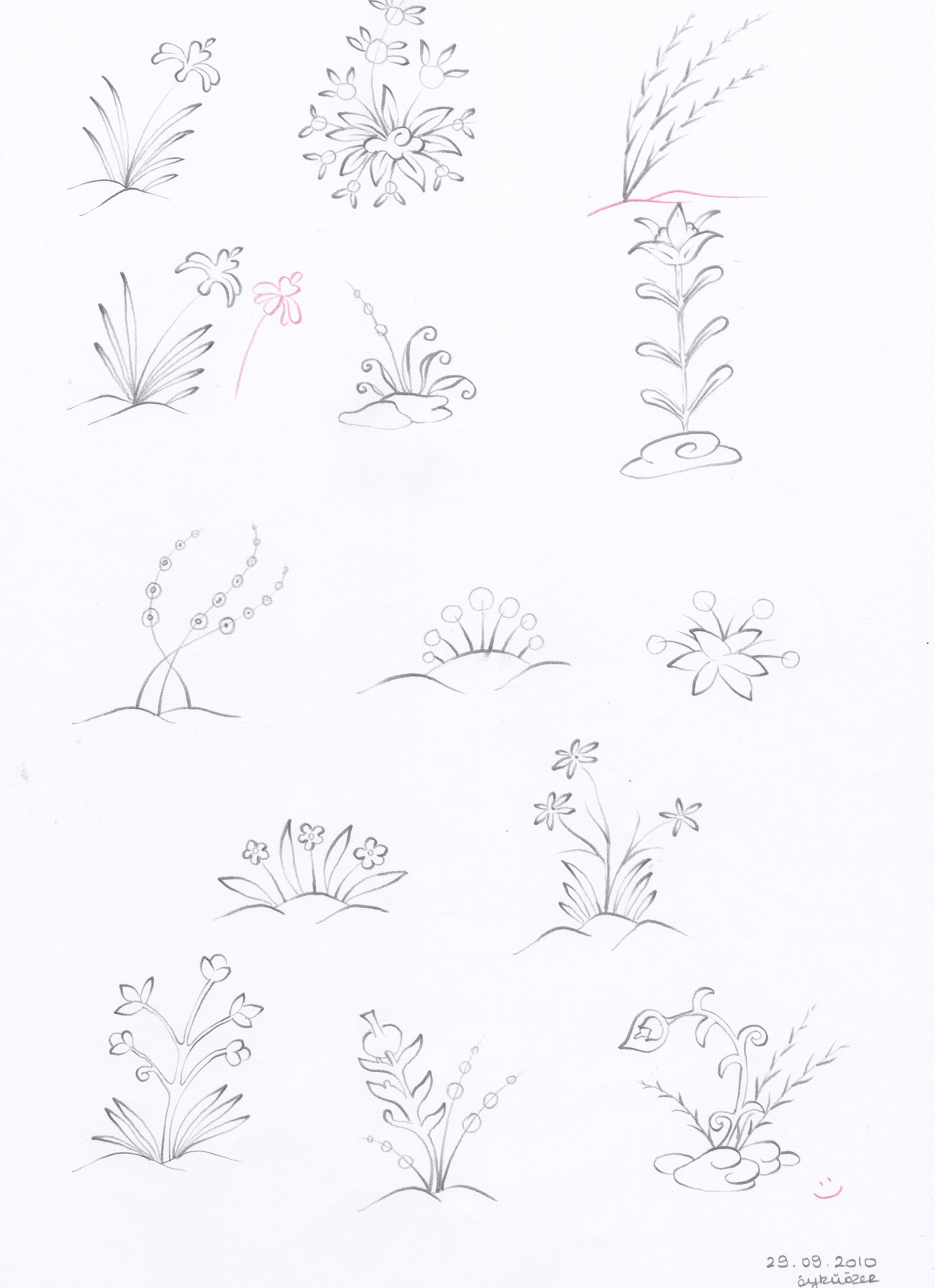 Plants and flowers bitki pinterest plants flowers and