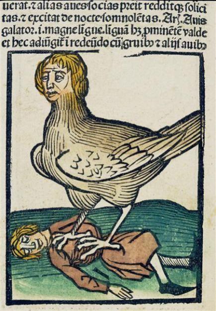 """Résultat de recherche d'images pour """"gravure moyen age oiseau"""""""