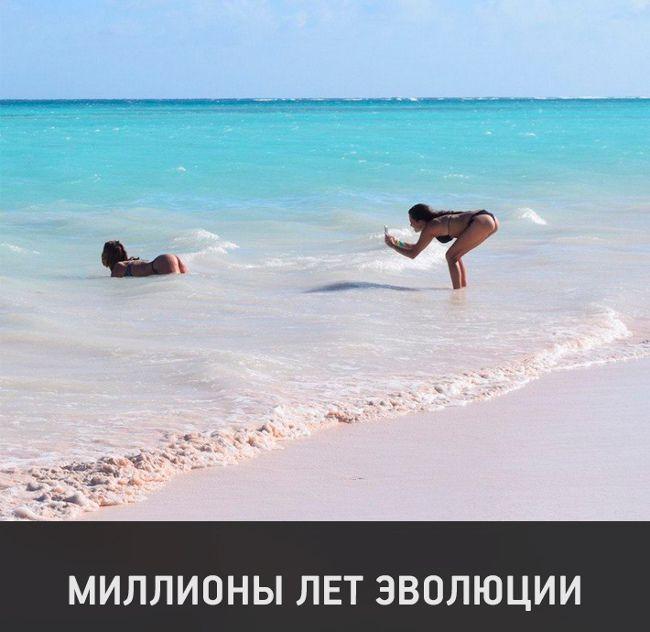 Миллионы лет эволюции #пляж #море #фото #фотосессия #юмор ...
