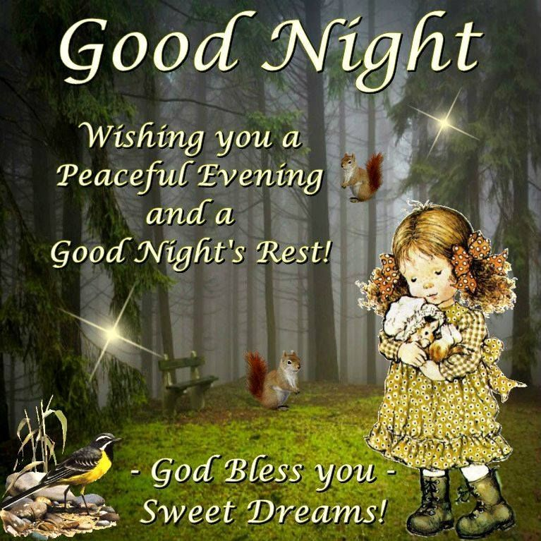 Goodnight Wishing You A Peaceful Evening And A Goodnight