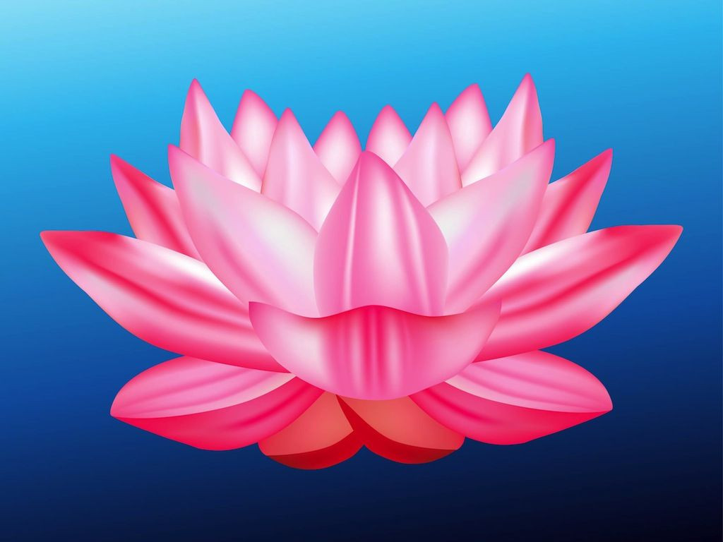 Lotus Blossom Clip Art | Lotus Flower Vector | psychology ...