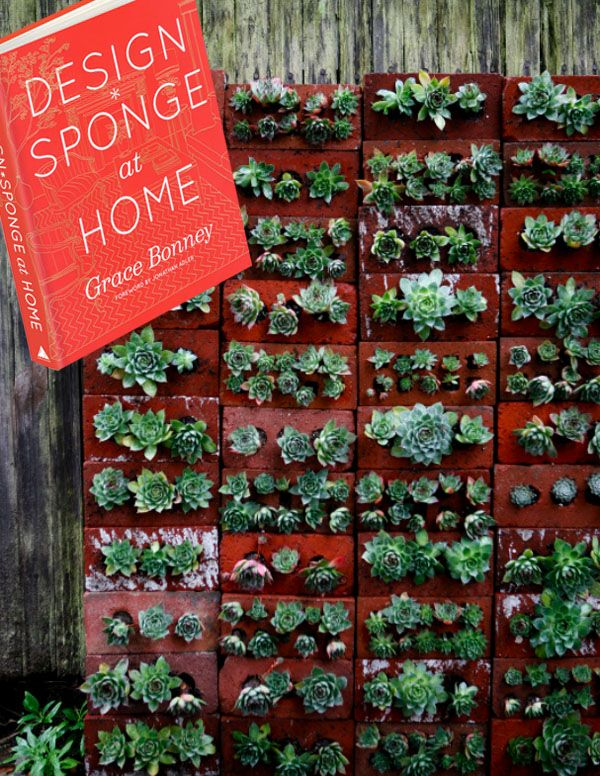 diy brick succulent wall. i may just try this for our pathway next to the house. so those rooms have a pretty view :)