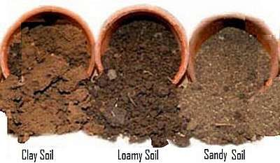 Garden Soil Types Clay Loamy Sandy Chalky