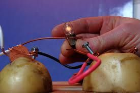How to Power a Light Bulb with a Potato Battery Learning to power ...