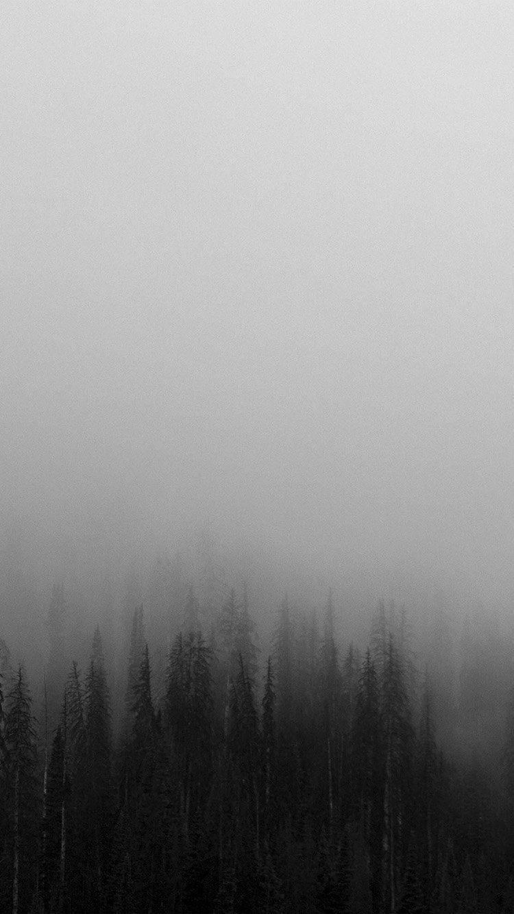 FOG MINIMAL MOUNTAIN WOOD NATURE WALLPAPER HD IPHONE