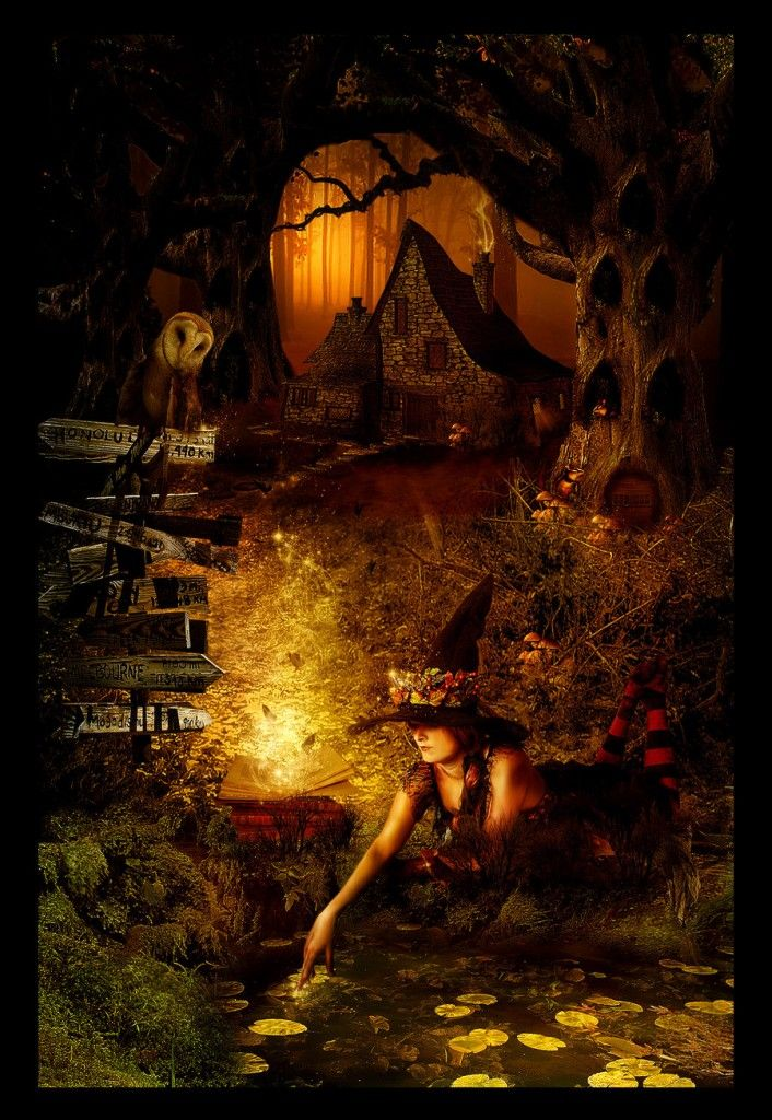 Spooky Forest   Spooky Forest by Lilla Márton - Photoshop Creative