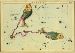 catherine tennant horoscope