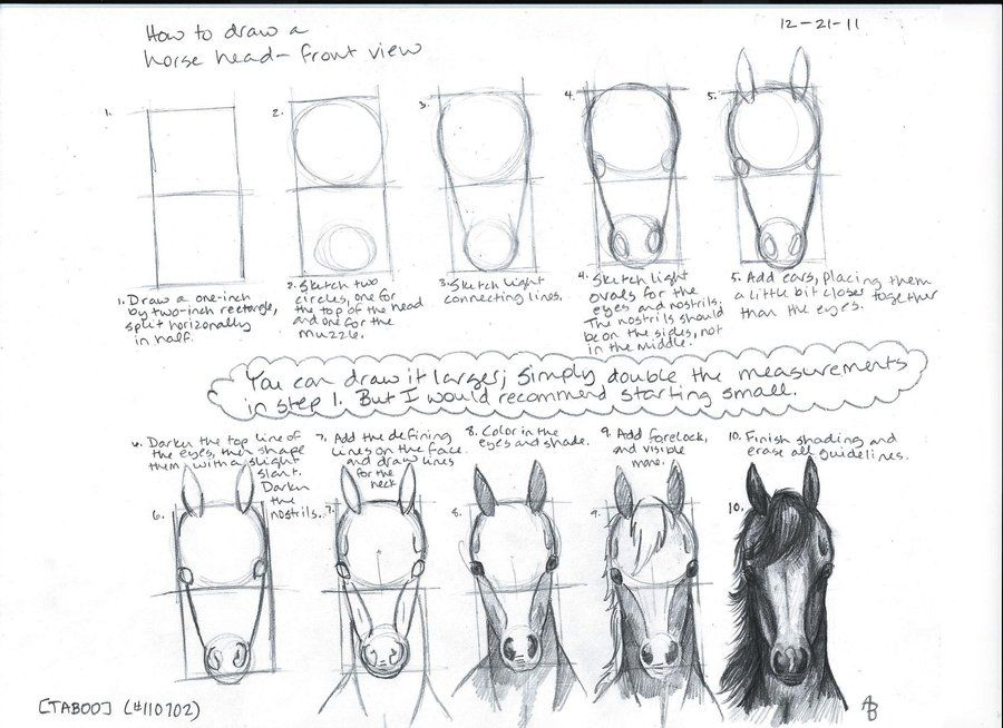 Horse head drawing for kids - photo#13