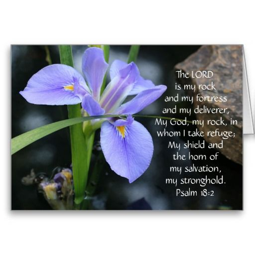 Sympathy Quotes Bible: Floral Sympathy, Scripture Verse On God's Strength Card