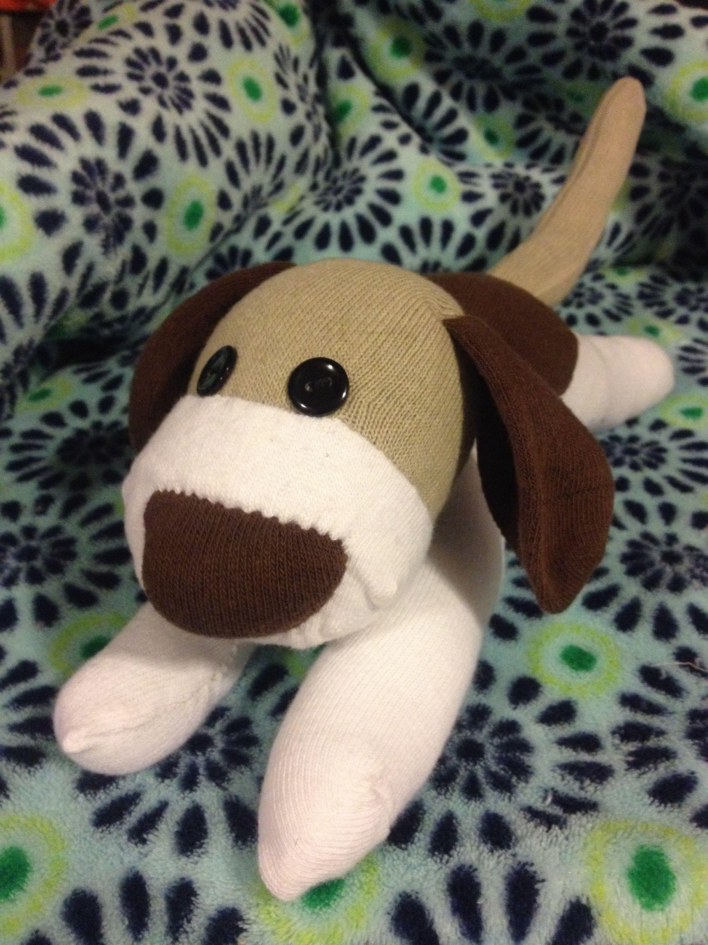 Sock Dog Sock Beagle Plush Beagle Sock Monkey Order Custom Sock Animals At Www Facebook Com Mbinak Sock Animals Sock Toys Plush Beagle [ 3264 x 2448 Pixel ]