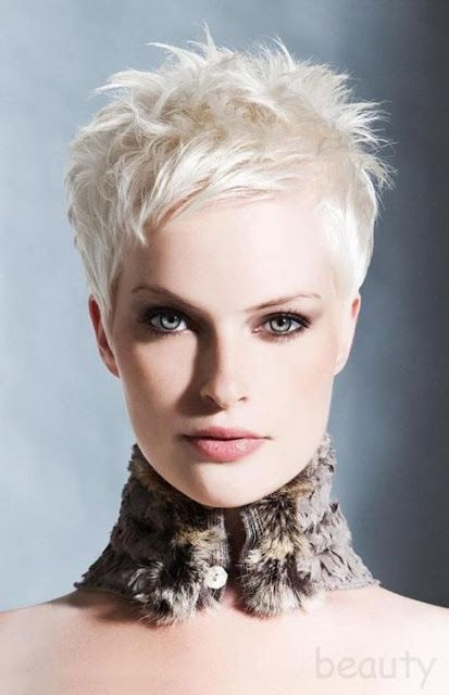 Spiky Short Hairstyles The Haircut Web Funky Short Hair Blonde Pixie Hair Short Hair Styles Pixie