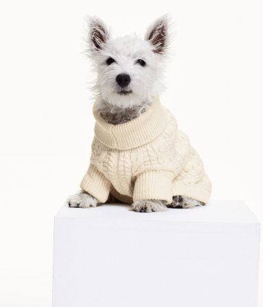 e99808ea540c Cable-knit dog sweater in a cotton blend with wool content. Ribbed ...