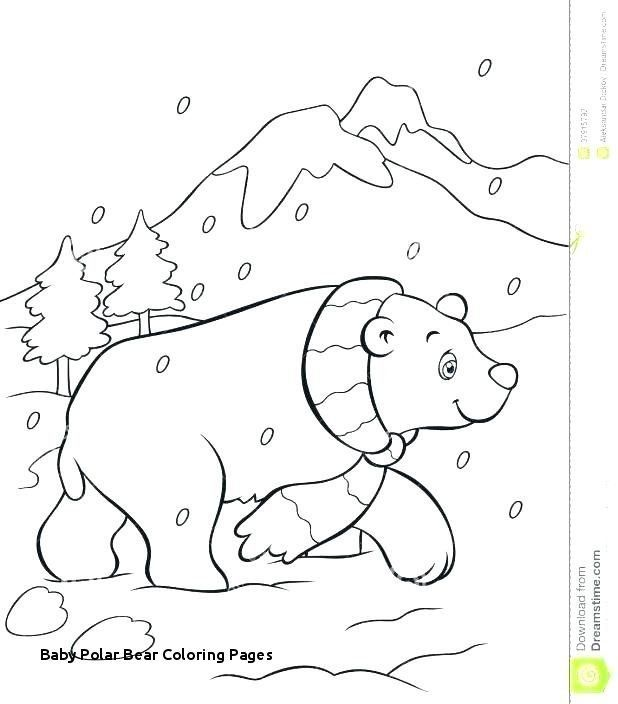 Polar Bear Coloring Pages Awesome Graffitiraw Polar Bear Coloring Page Bear Coloring Pages Christmas Coloring Pages