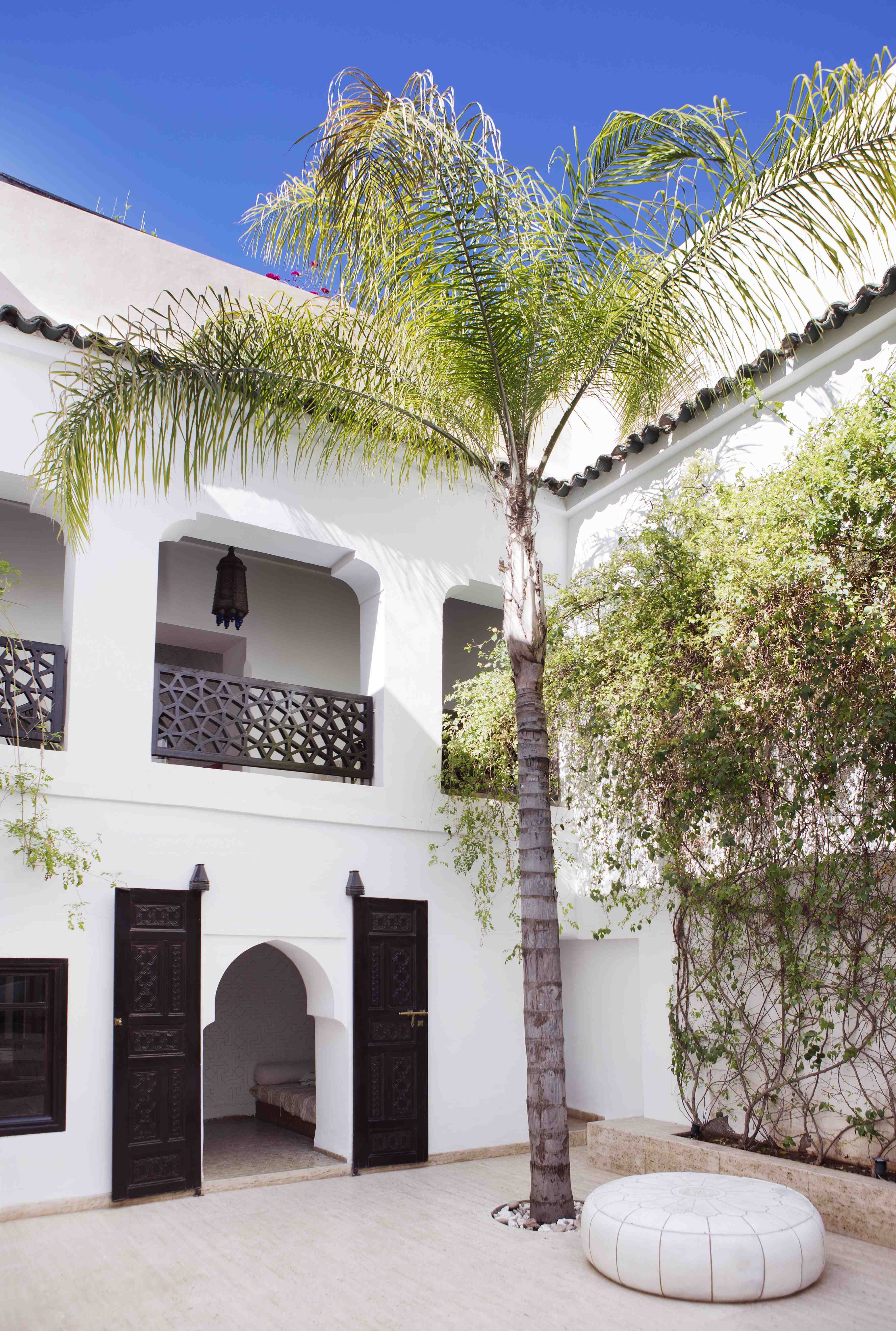 Maison Maroc Moroccan Courtyard Trees Outdoors White Walls Espresso