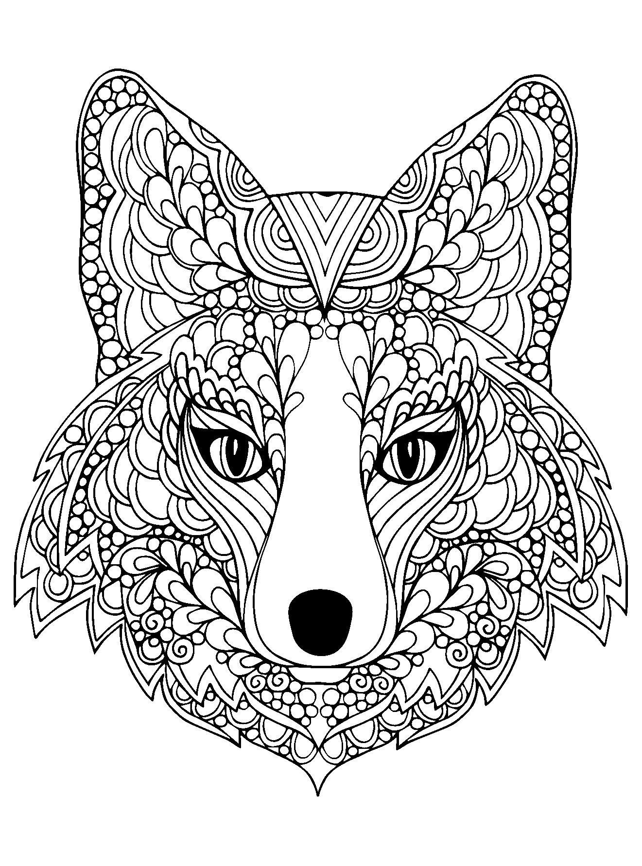 Joli coloriage d 39 une t te de renard a partir de la galerie animaux coloriages pinterest - Coloriage renard ...