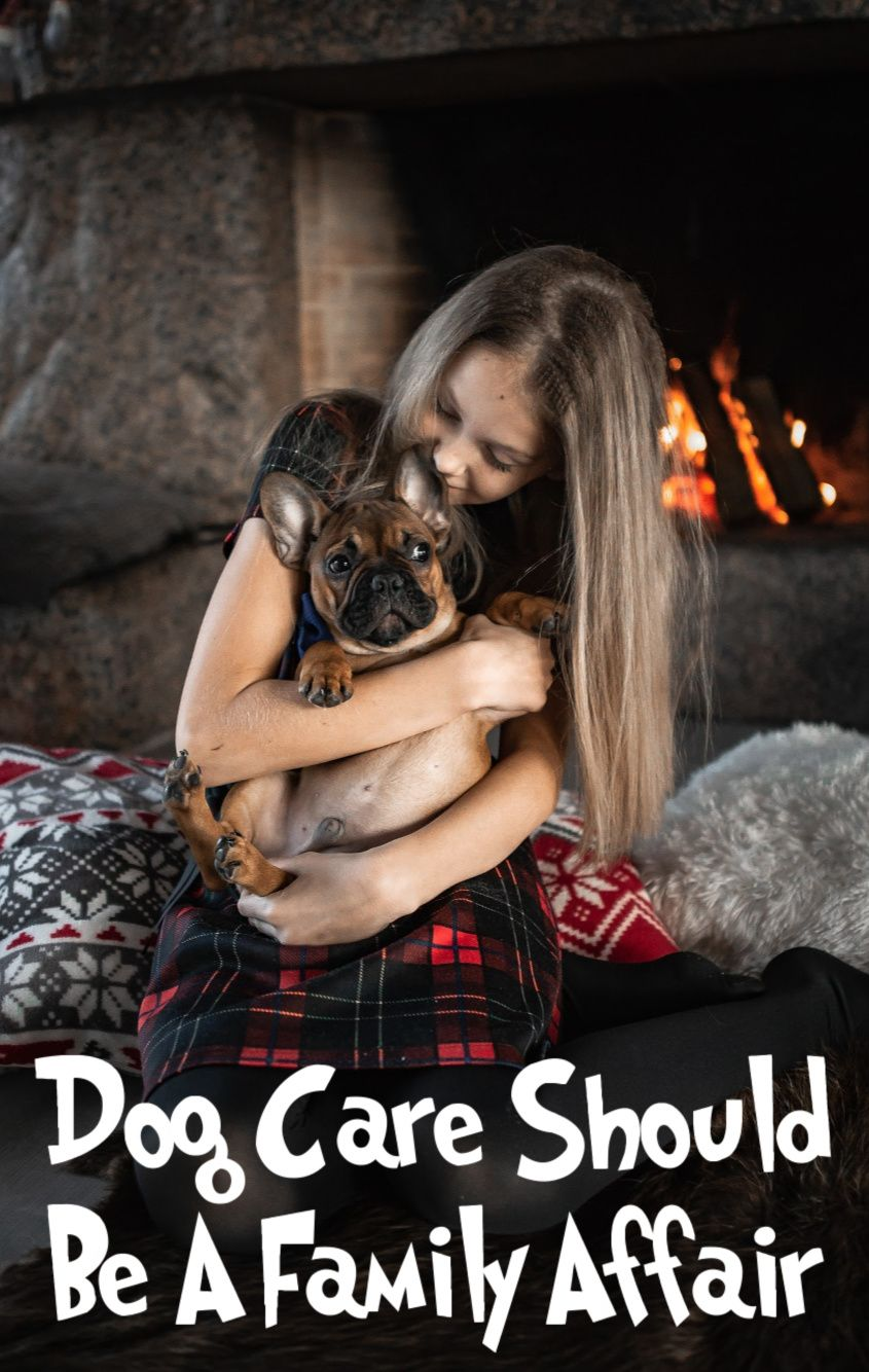 Dog Care Should Be A Family Affair in 2020 (With images