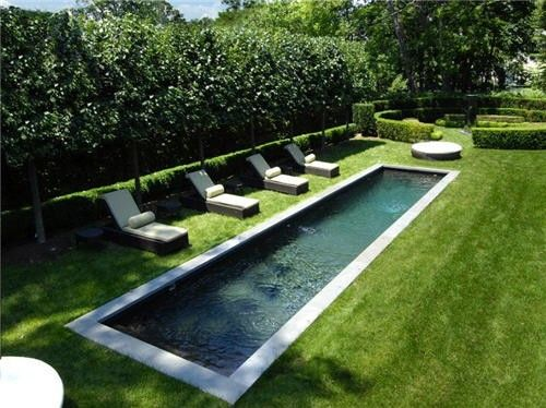 A Narrow Long And Shallow Pool For Hanging Out And Relaxing On Hot Days Pool Landscaping Swimming Pool Designs Small Swimming Pools