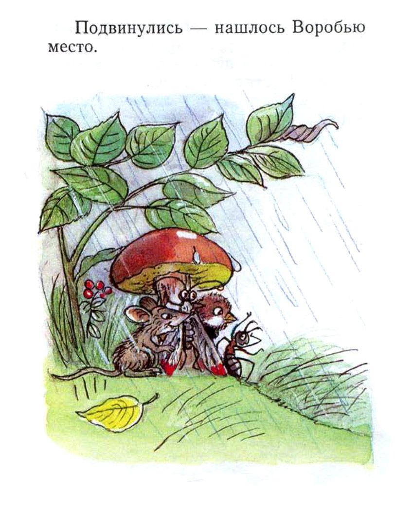 Сказки про знакомство грибов