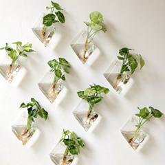 Wall Hanging Gl Planter Indoor Home Decor