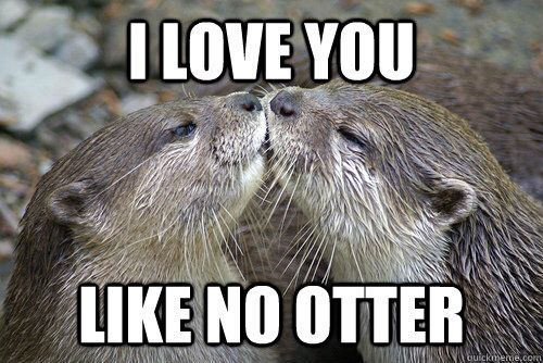 Otterly Adorable Love You Meme Romantic Memes Love You Funny