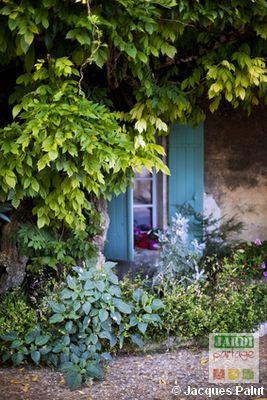 quelques id es de plantes pour une exposition ouest plut t jardin d 39 ornement jardins. Black Bedroom Furniture Sets. Home Design Ideas