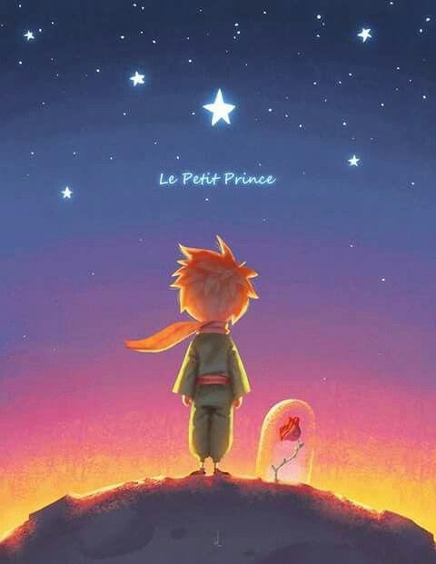 Pin De Helena Lobo En Petit Prince El Principito El
