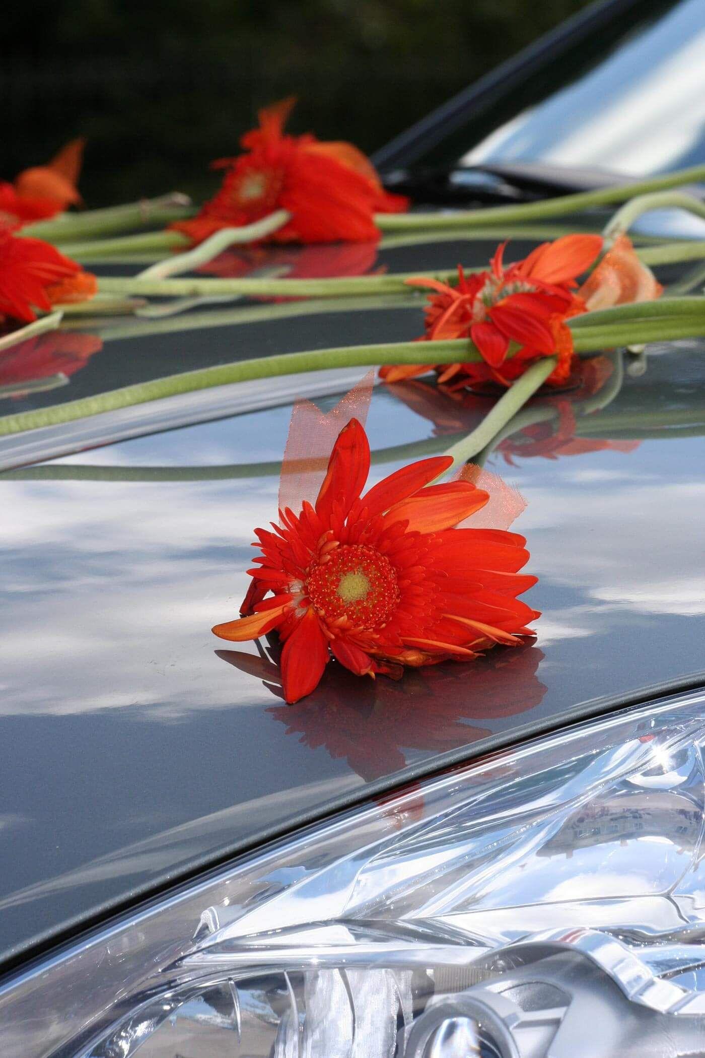 Autodekoration Hochzeit selber machen | Bildergalerie mit