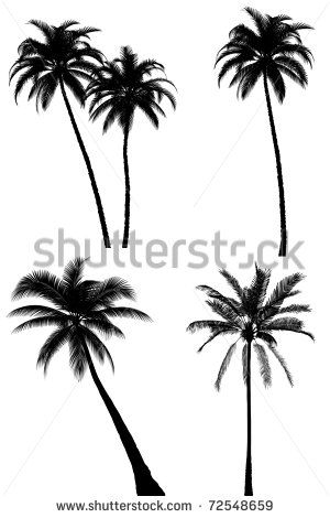[+] Palm Tree Roots