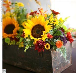 Rustic sunflower windowbox