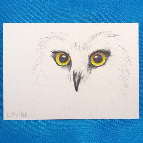 owl aceo card original pencil drawing by linda by lindamillerart
