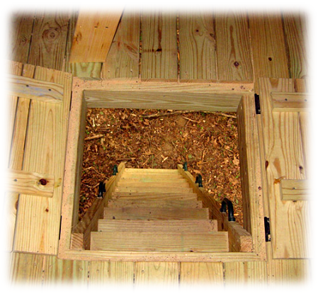Stairs For A Tree House Tree House Accessories Tree House