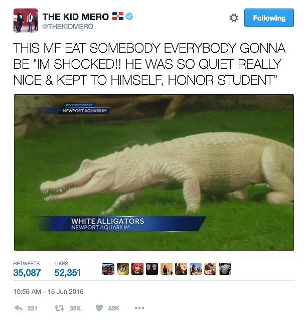 The Kid Mero Tweet: White Alligator