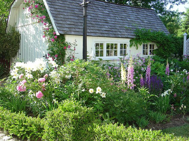 Foxgloves, Peonies And Phlox In This Lovely Cottage Style Garden   Andrew  Henwood