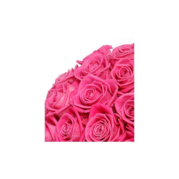 pink roses ❤ liked on Polyvore featuring flowers, backgrounds, pink, flores and roses