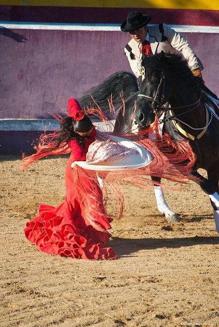 Arte Ecuestre Flamenco by El ignorante feliz, via Flickr