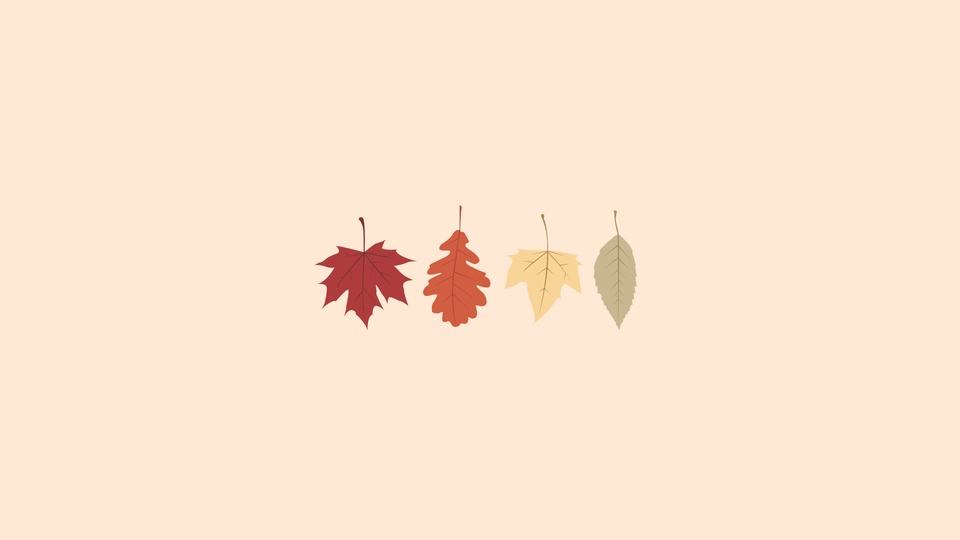 November Desktop Background Cute Desktop Wallpaper Fall Wallpaper Desktop Wallpaper Art