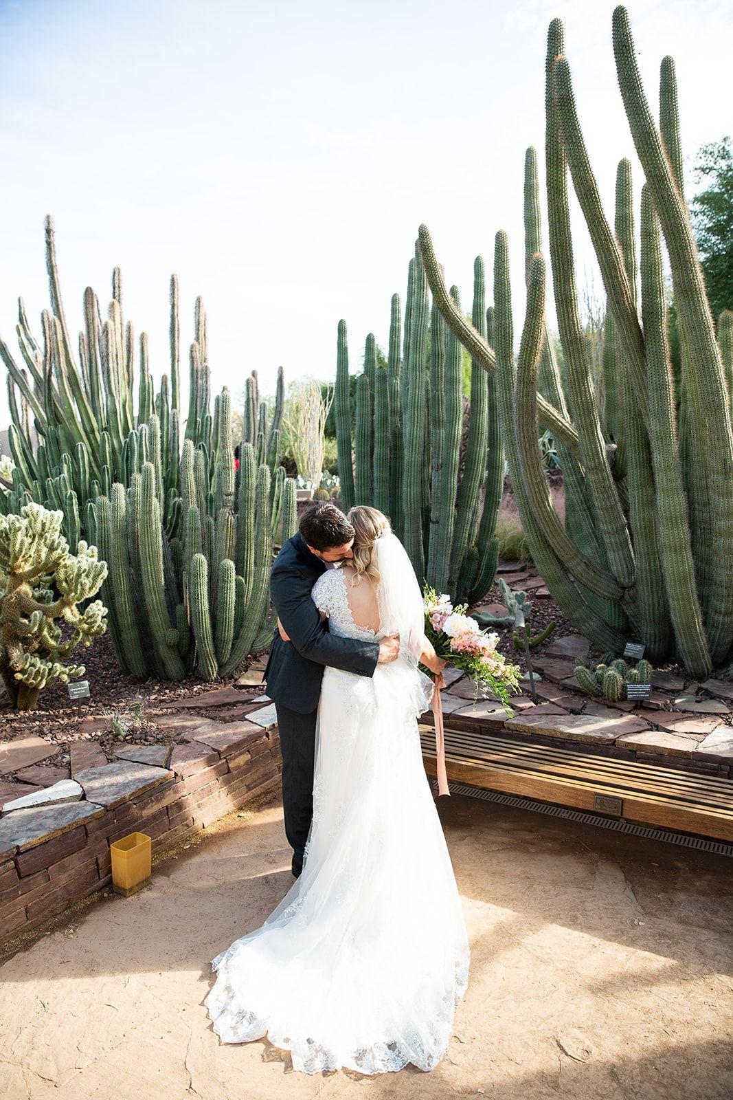 December wedding at the Desert Botanical Gardens in