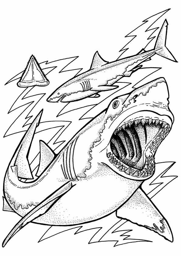 Print Coloring Image Momjunction Shark Coloring Pages Ocean