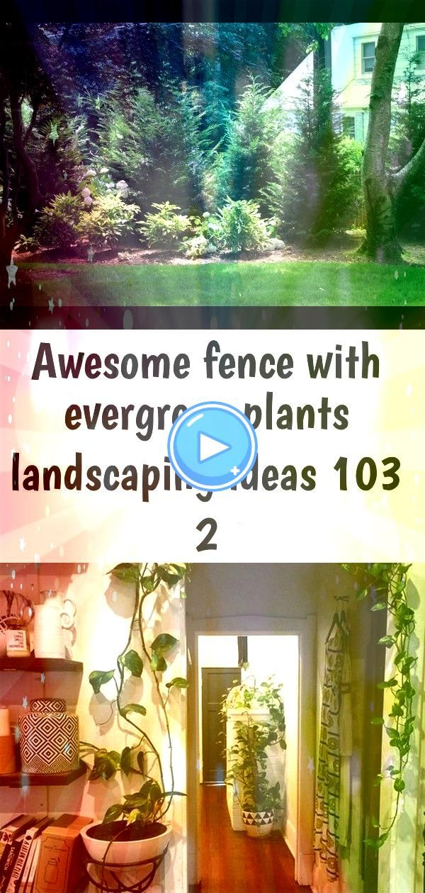 fence with evergreen plants landscaping ideas 103 2 Awesome Fence With Evergreen Plants Landscaping Ideas 2 Landscaping Service Garden Succulent Plant Business CardAwesom...