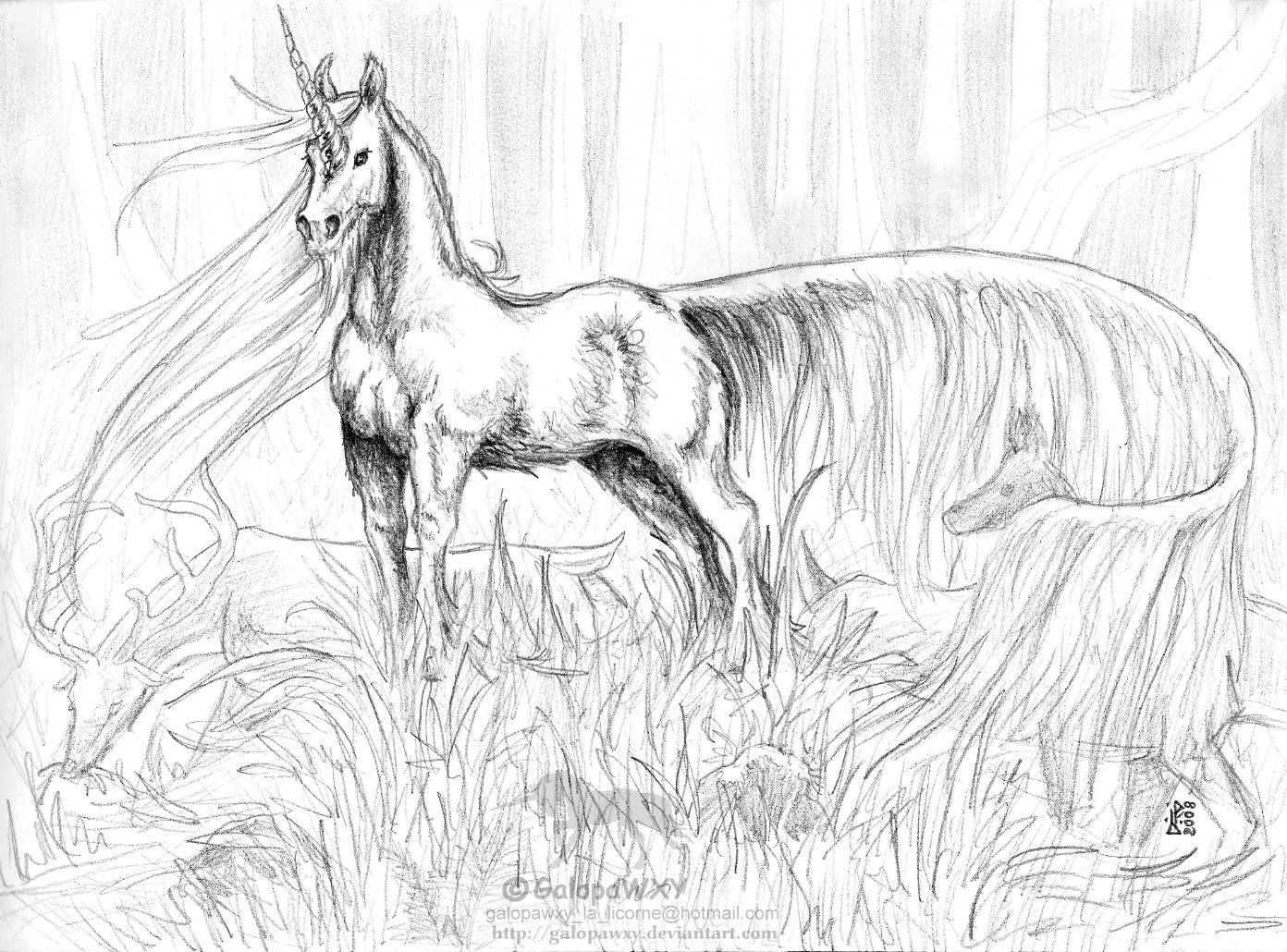 Magical unicorn coloring pages - Unicorn Coloring Pages